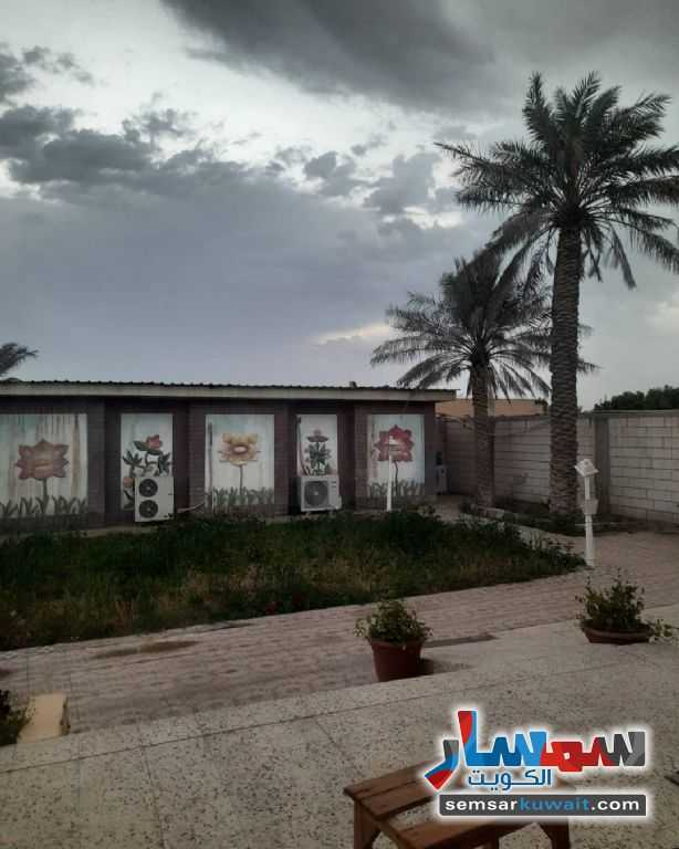 Ad Photo: Land 1600 hectare in Al Ahmadi