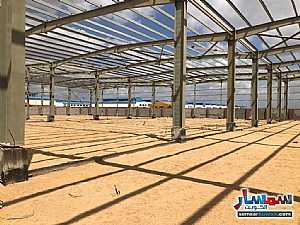 All 14,500 sqm For Sale Sadat Minufiyah - 1